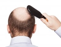 Experimental compound reverses hair loss, skin inflammation related to fatty diet, mice study shows