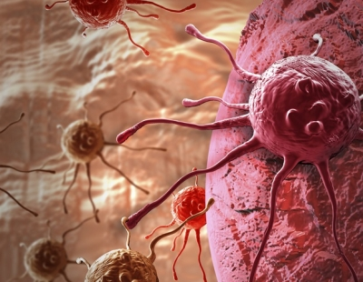 New research into how cells communicate could pave way for improved cancer treatments